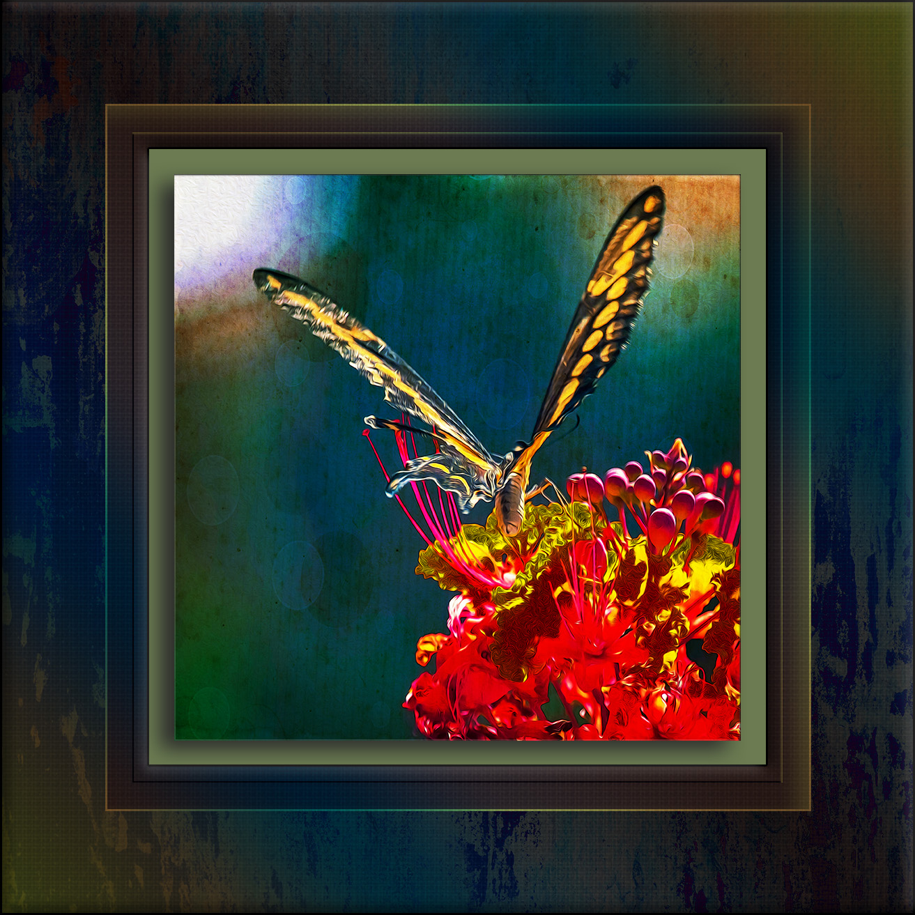 Two-tailed Swallowtail-0489-2_art blog