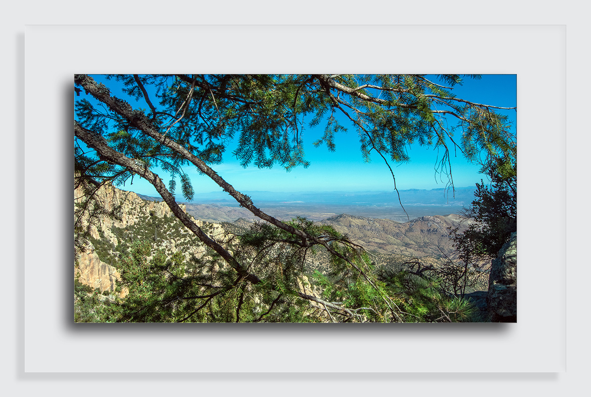 Green Mountain Trail-3270 blog