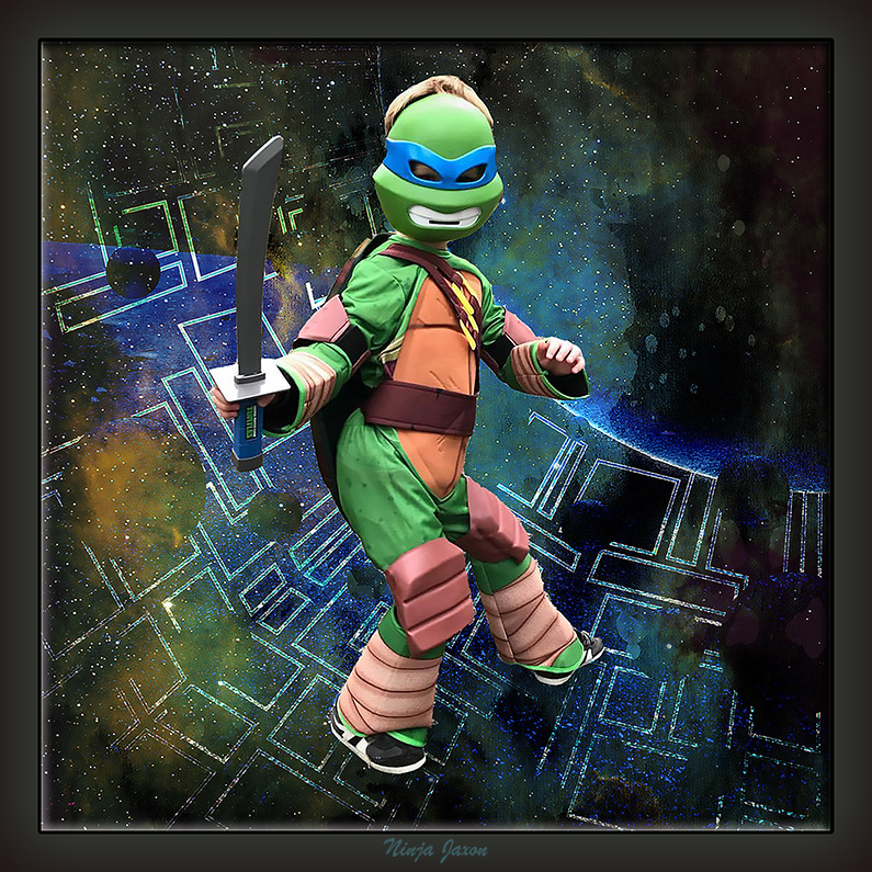 Ninja Turtle Jaxon framed blog