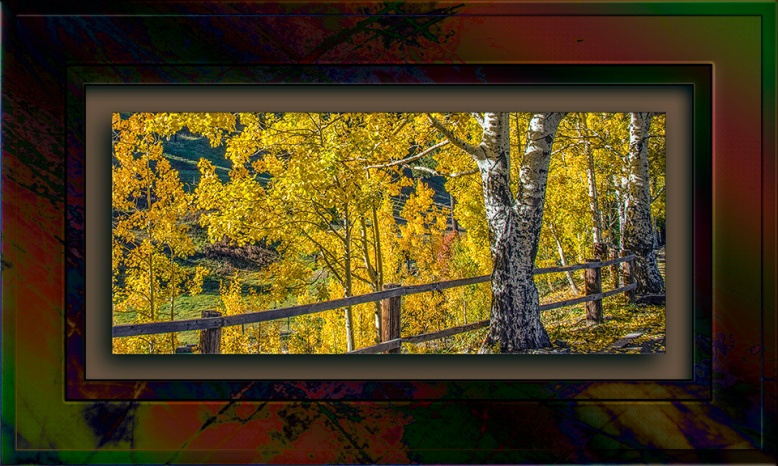 Aspen Draw Fall Colors 2013-8364 blog II.jpg