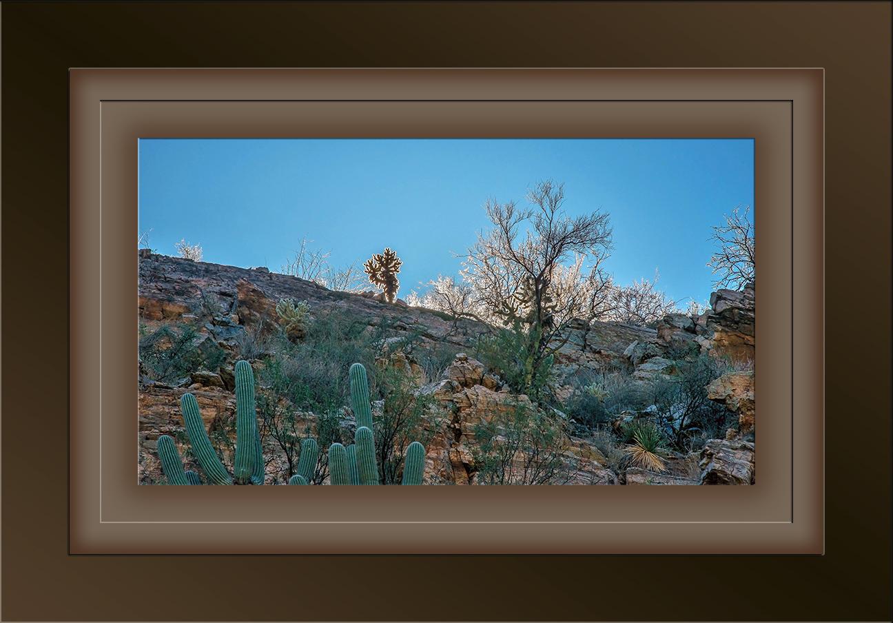 Canyon Rim Sunlight blog