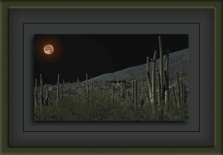 Milagrosa Loop-9084_Alone In The Night Shadows II Moon blog
