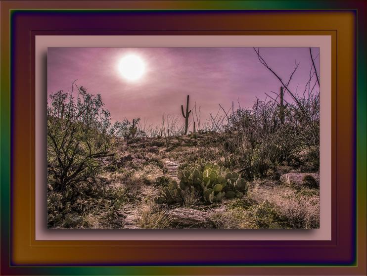 Milagrosa Loop Hazy Sun (1 of 1)-17 blog