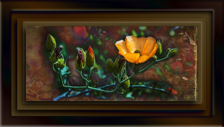Wildflower Art blog