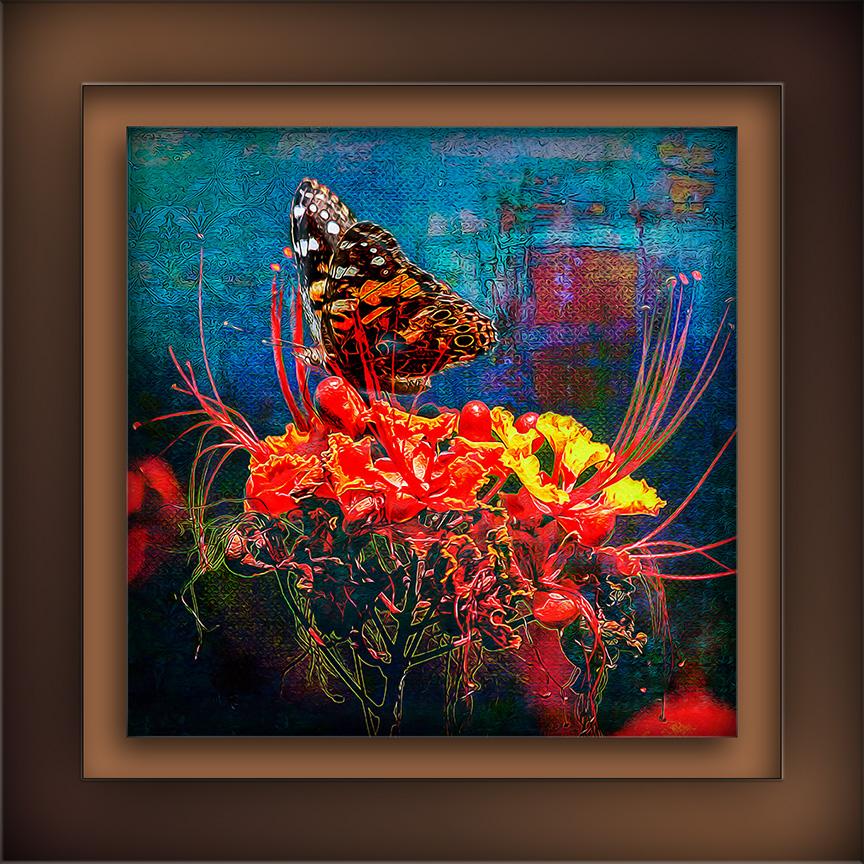 Painted Lady-0439 Grunge Art II blog