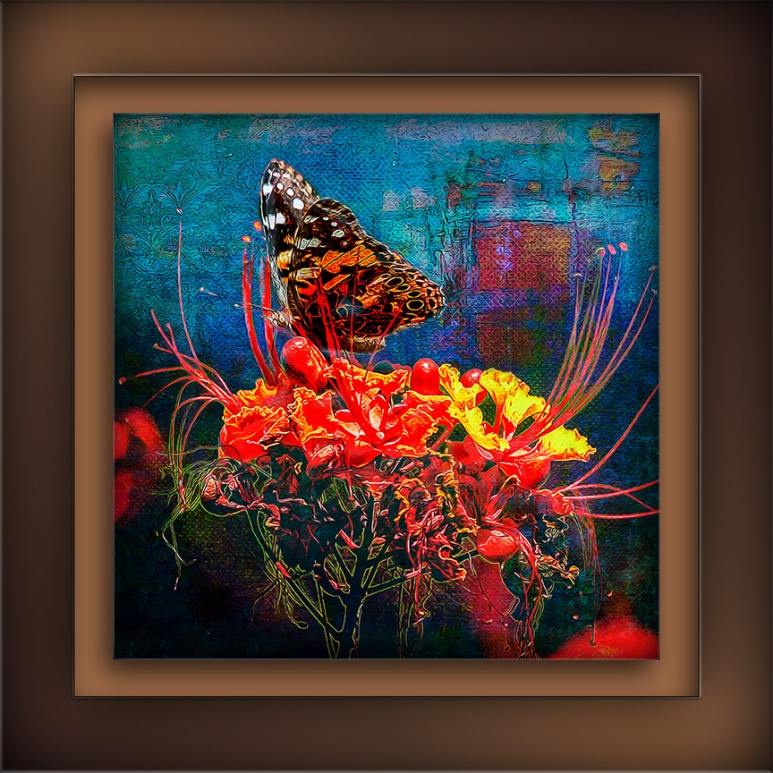 Painted Lady-0439 Grunge Art II blog