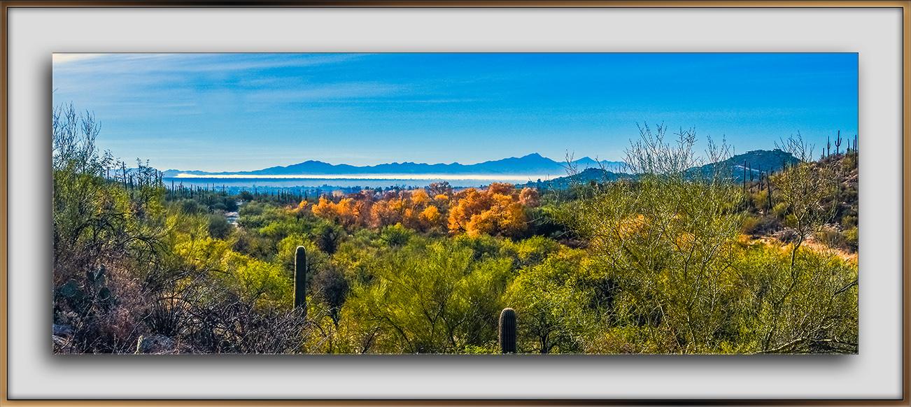 Sabino Canyon January colors-0845 Panorama blog