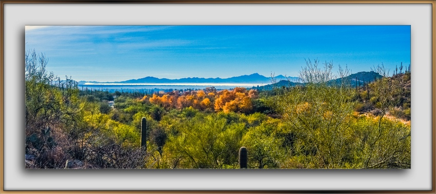 Sabino Canyon January colors-0845 Panorama blog