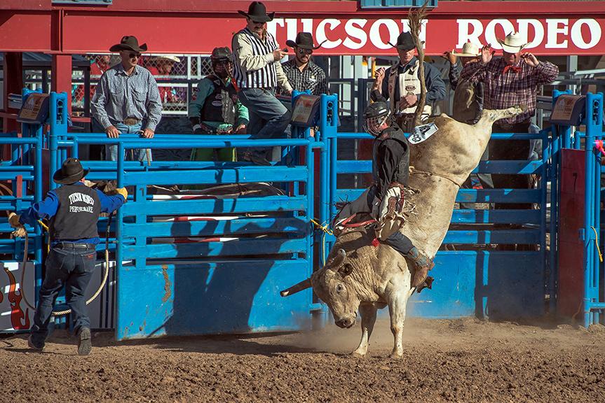 Bull Riding-0335 blog