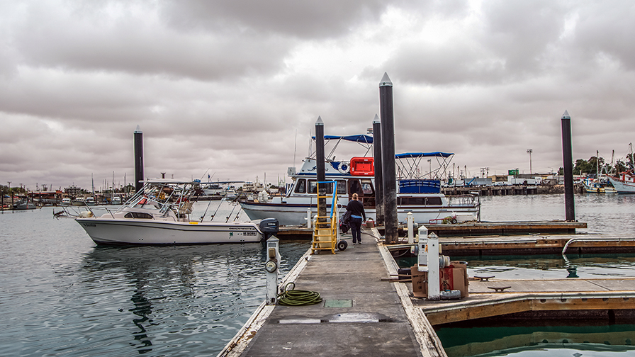 Fishing In Puerto Peñasco-3364 blog