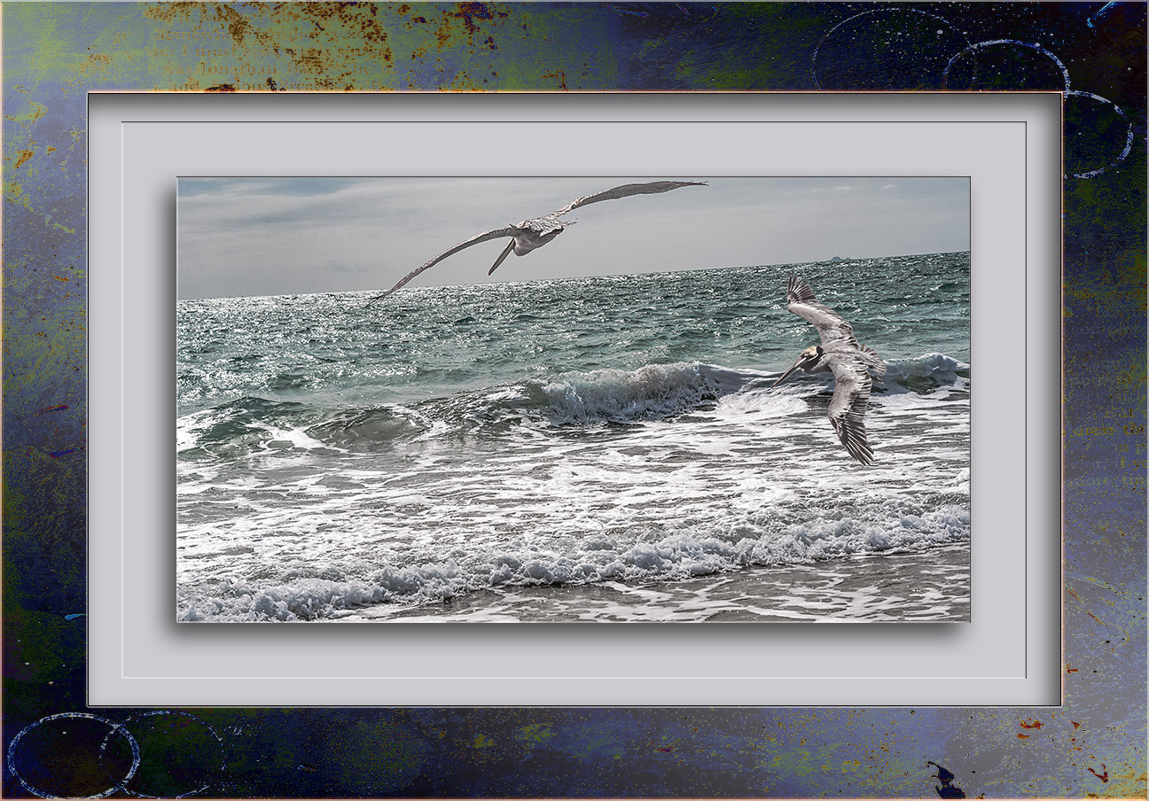 Living On Pelican Time blog