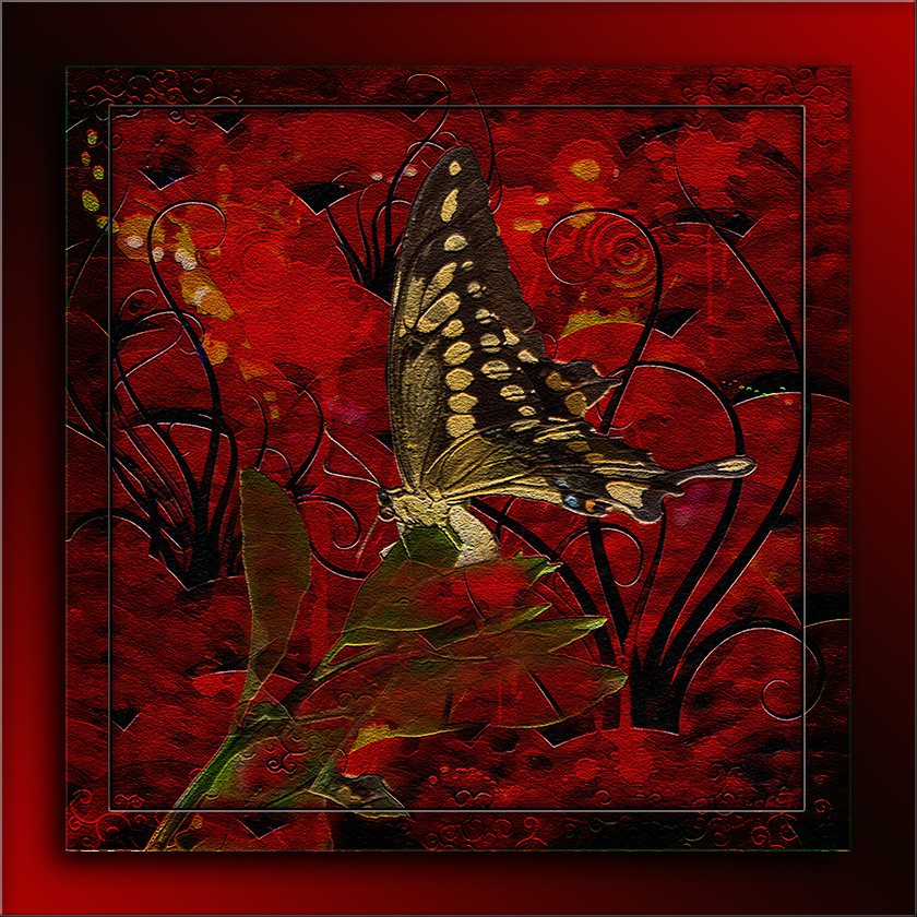 Two-tailed Swallowtail-3253 art II blog II