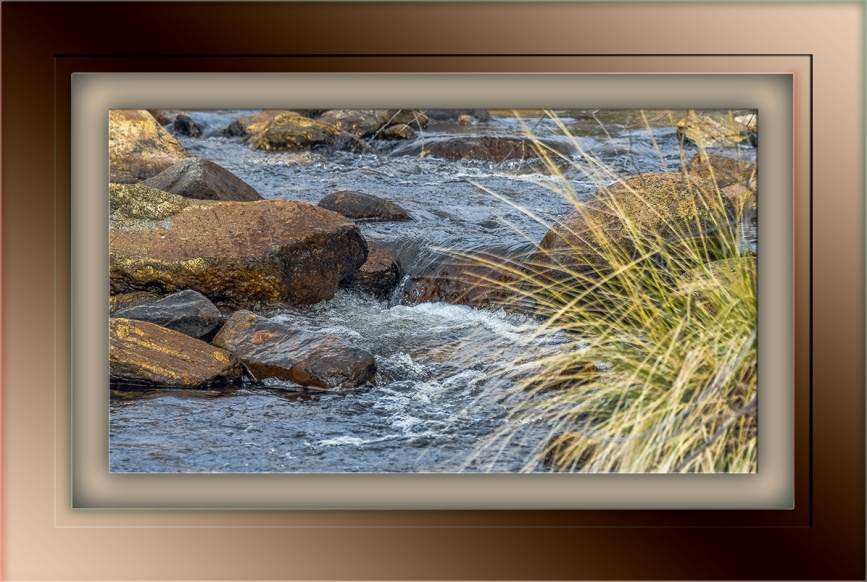 Sabino Creek-1265 blog