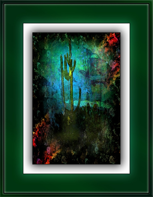 Saguaro In Sabino Canyon (1 of 1) desert abstract blog