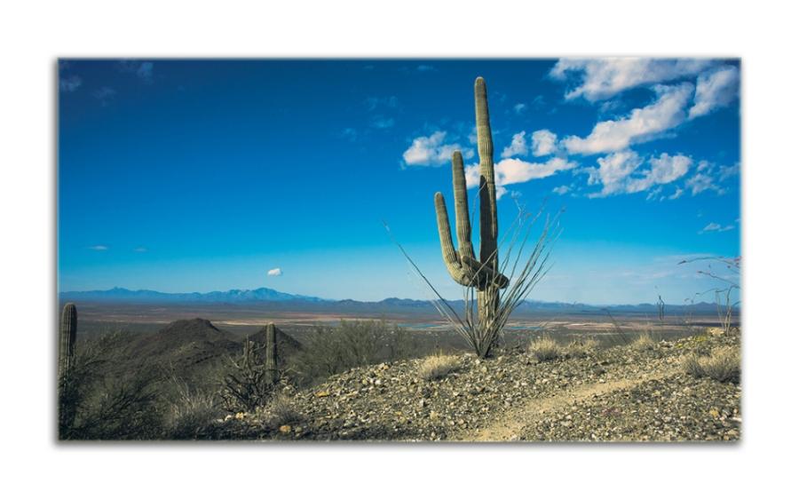 Wassen Peak (1 of 1)-7 blog