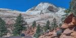 Zion National Park-1775blog
