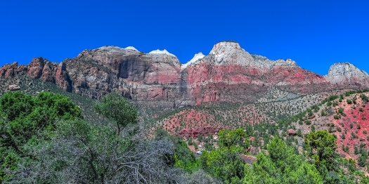 Zion National Park-1781 blog