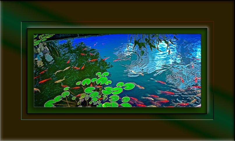Fredric Goldfish 3165 blog