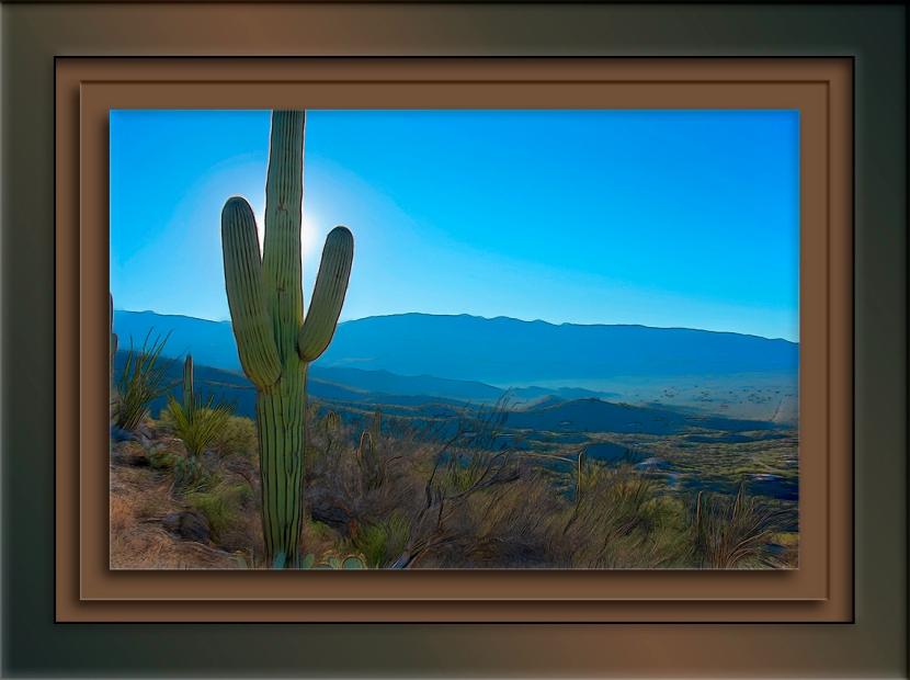 Agua Caliente -9217-Edit Smudge blog