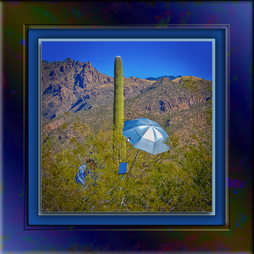 Artist In The Desert (1 of 1)_art blog