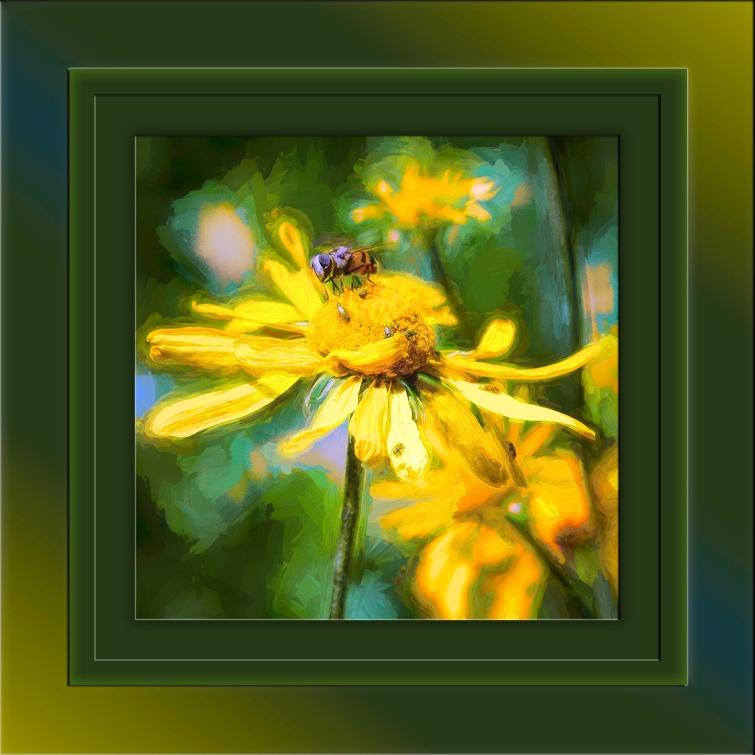 Bee On Sneezeweed-Edit-2-art-blog