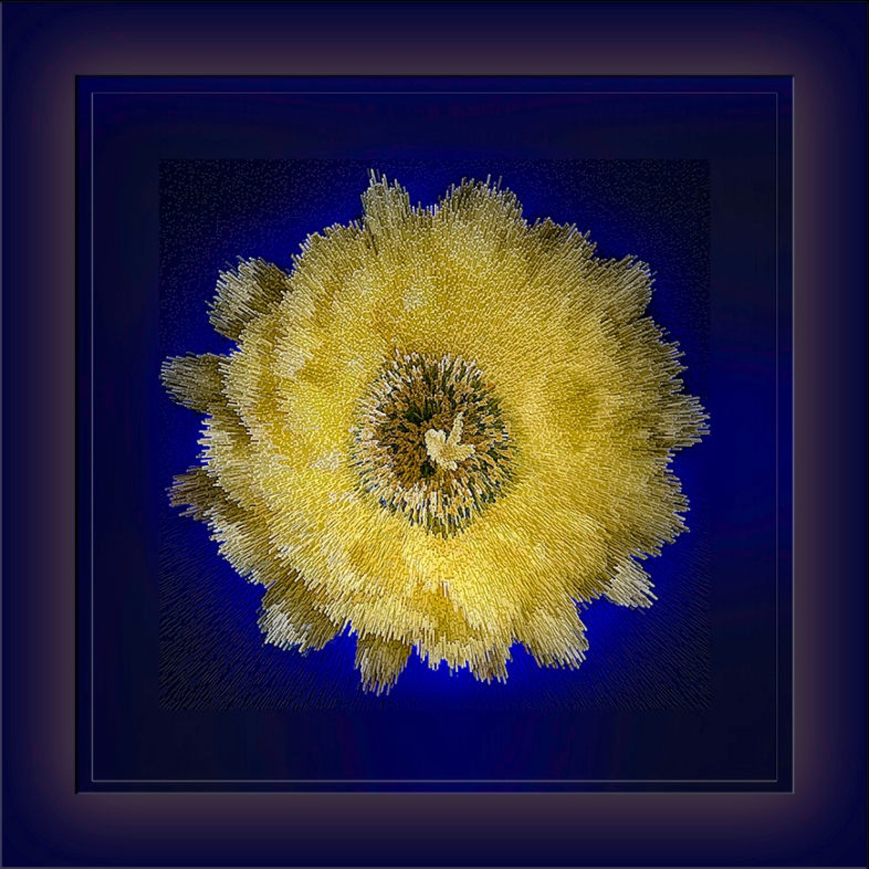 Cactus Flower-Edit-1-art-blog