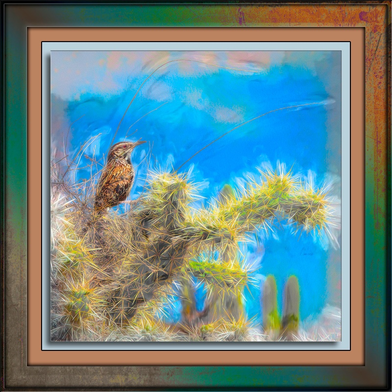Cactus Wren Building a Nest-Edit-4-art-blog