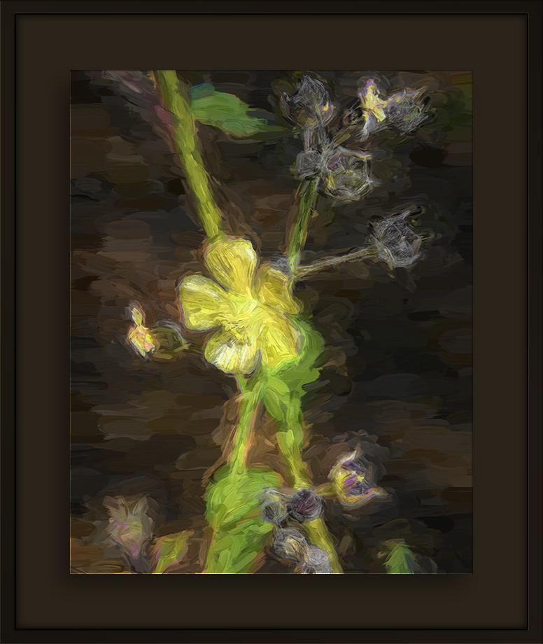 Mountain Flower--2-Edit-1-art-Edit-2-blog