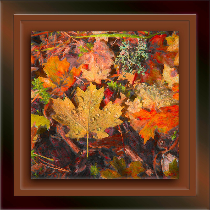 Mt. Lemmon Leaves-Edit-1-art-blog