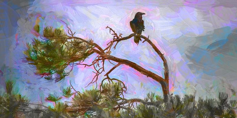 Raven-Art-blog