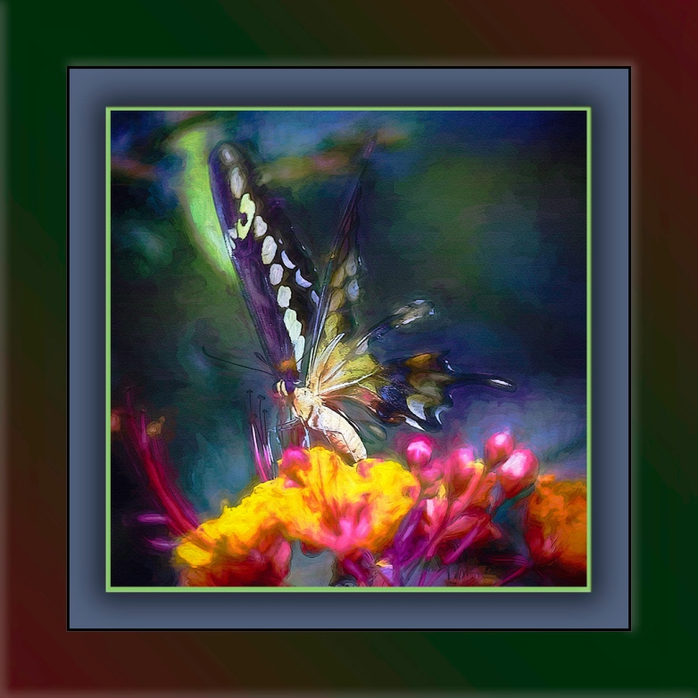 Two-tailed Swallowtail-0458-art-Edit-1-blog