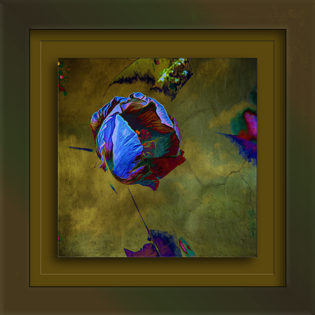 Wild Cotton Blossom-Edit-2-art-Edit-1-blog