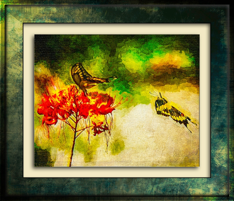 Two-Tailed Swallowtail Butterflies-Edit-2-art-blog.jpg