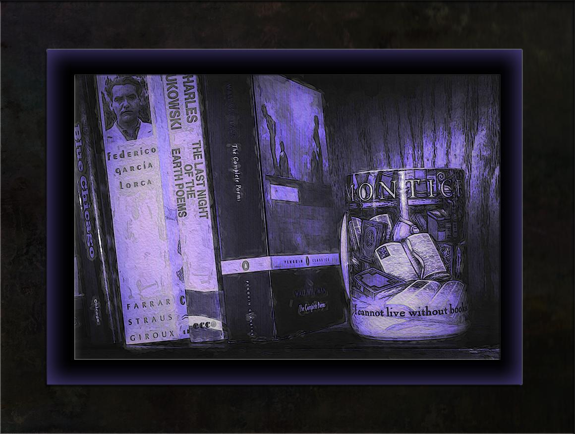 Book Shelf-2-art-blog.jpg