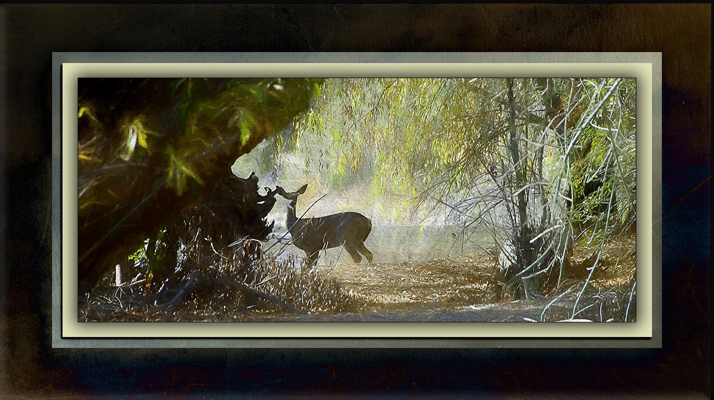 Deer Above The Dam-Edit-art-blog