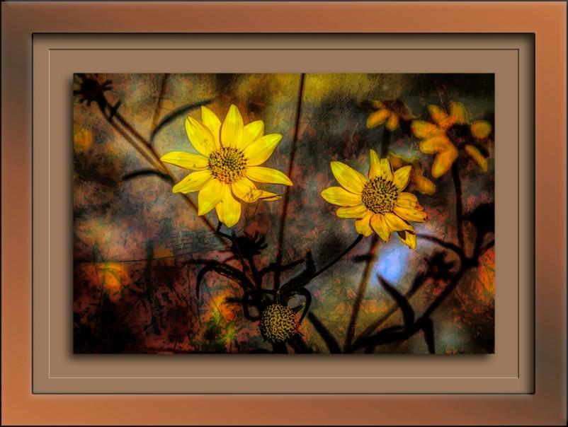 Lanceleaf Goldeneye Grunge Art-Edit-4-72-blog