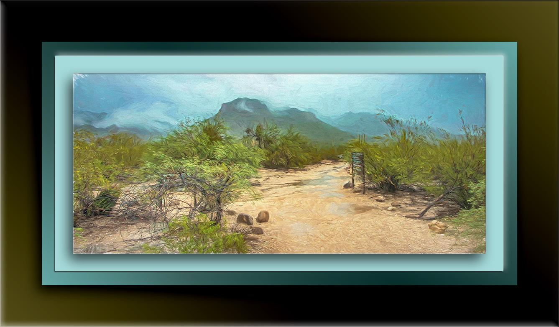 Sabino Canyon (1 of 1)-painting-blog