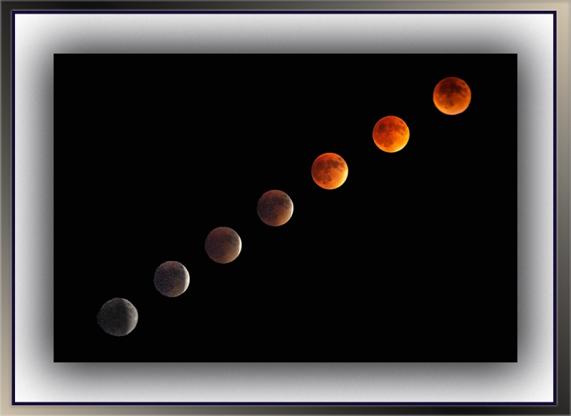 Blood Moon Collage blog