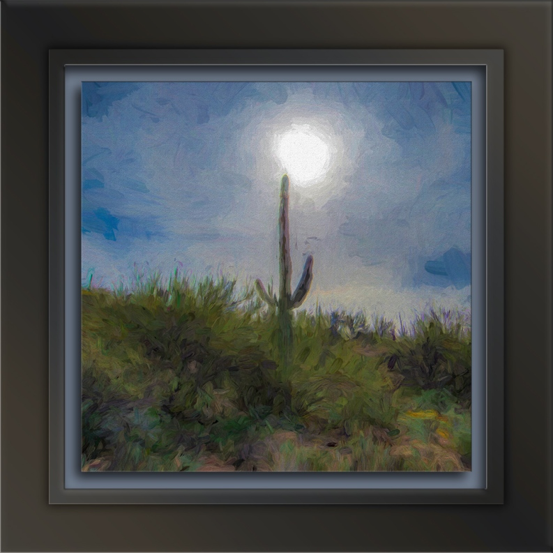 saguaro sunrise-art-72