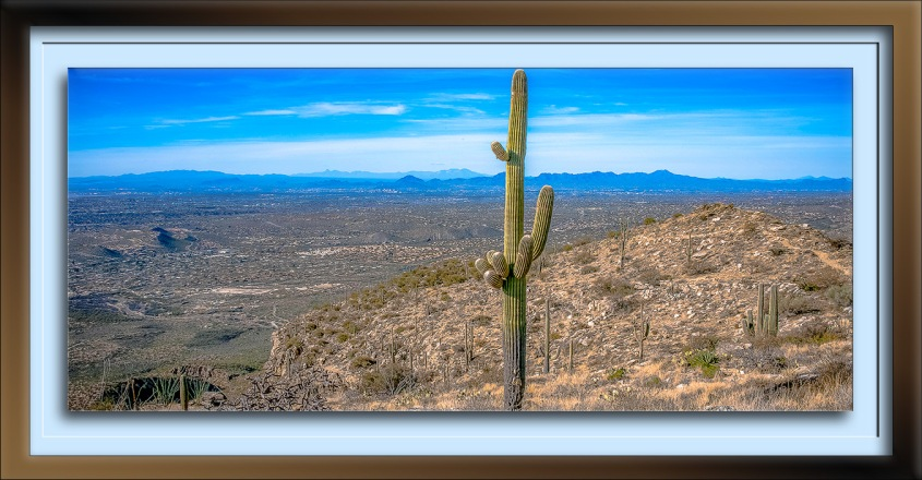 Blackett's Ridge-9892-Tucson Basin-72
