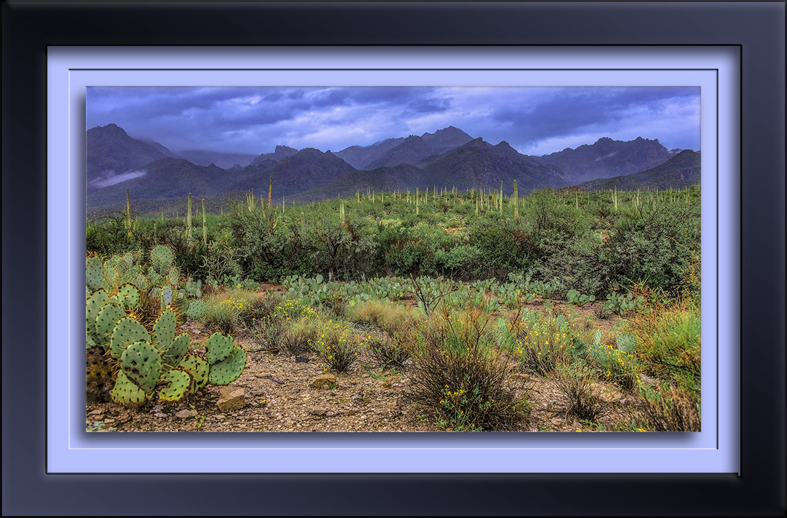 Rain In Sabino Canyon-Edit-1-72