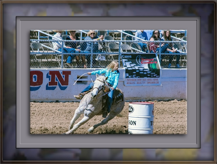 rodeo-2017-0724-blog