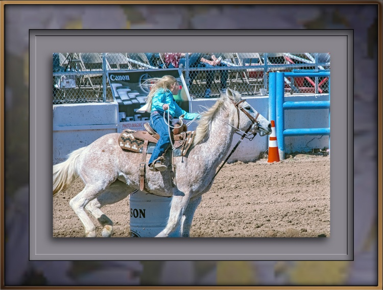 rodeo-2017-0725blog