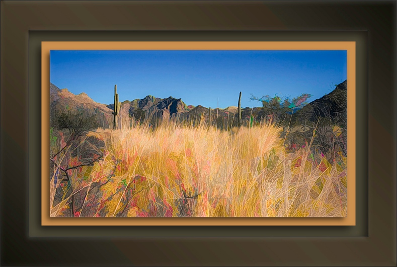 Sabino Canyon Fall-2-art-2-72