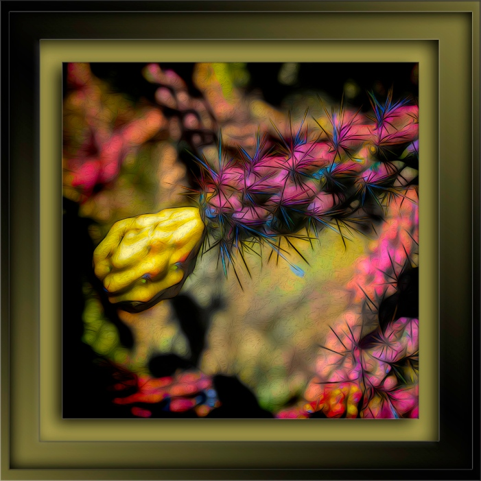 Cholla-Edit-2-art-72