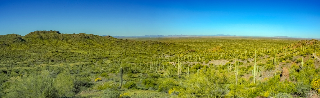 Panorama west of Picacho Peak-72.jpg