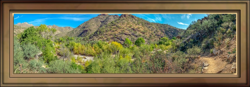 Bluff Train Overlooking Sabino Creek-72-2.jpg