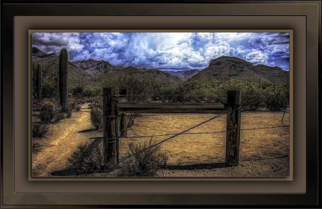 Sabino Canyon Fenceline-72-2