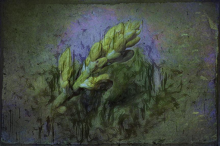 Spring Flowers-3006-4-art-Edit-1-art-72.jpg
