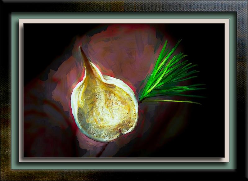 Milagrosa Loop (1 of 1)-33 Pine Leaf Milkweed Pod-Edit-2-art-72